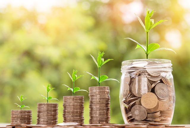 růst úspor domácnosti